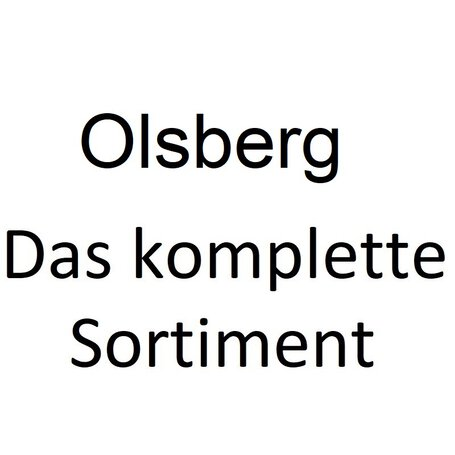 Olsberg OEC Efficiency Controller Smart 23/7961.9200